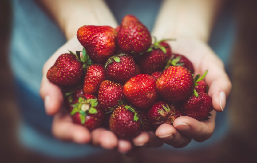 photo of strawberries in hand