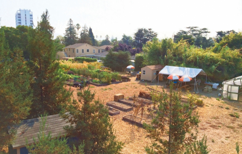 landscape of Taylor Street Farm in San Jose
