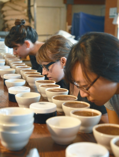 Testers sniff coffee for robustness
