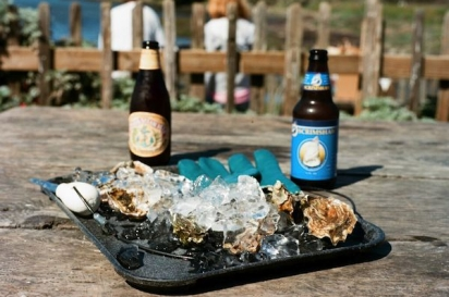 meal with oysters and beer