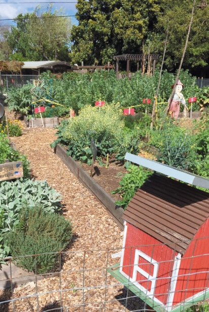 a view of the garden at Ohlone Elementary School
