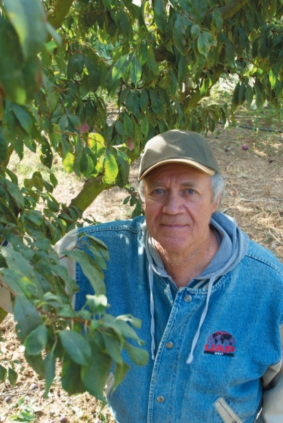 Andy Mariani of Andys Orchard