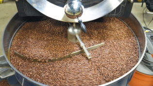 Roasted coffee beans being cooled at RItual Coffee in San Francisco